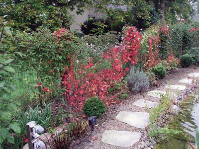 Garten Hirsch